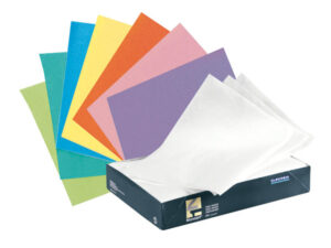 TP250 PAPEL ABSORB.BANDEJ.250u BLANCO