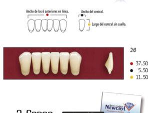 DIENTES NEWCRYL-VITA 26 LO A3.5
